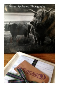 Print and Notepad on display, will make great gifts...
